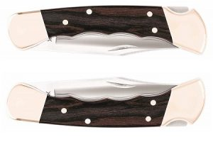 Buck 110FG Folding Hunter Knife Review