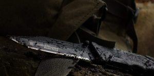 Smith & Wesson Border Guard SWBG2TS