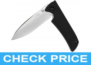 "Kershaw 3.1"" Stainless Steel Knife Review"